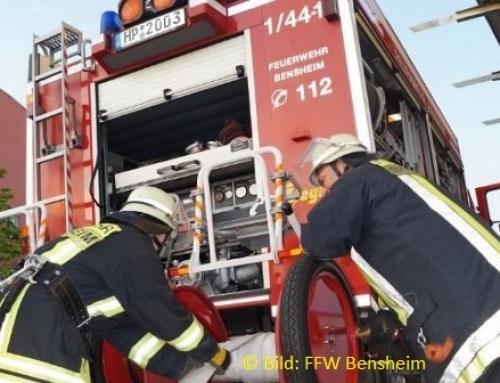 Mehrere Brände gelöscht und eine Stute gerettet
